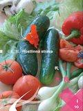 10. Rostlinná strava